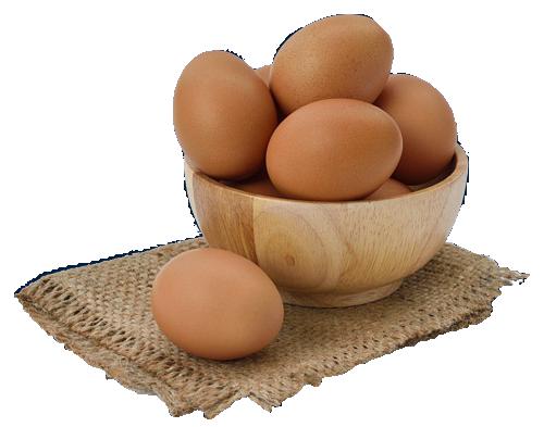 ovos-bowl